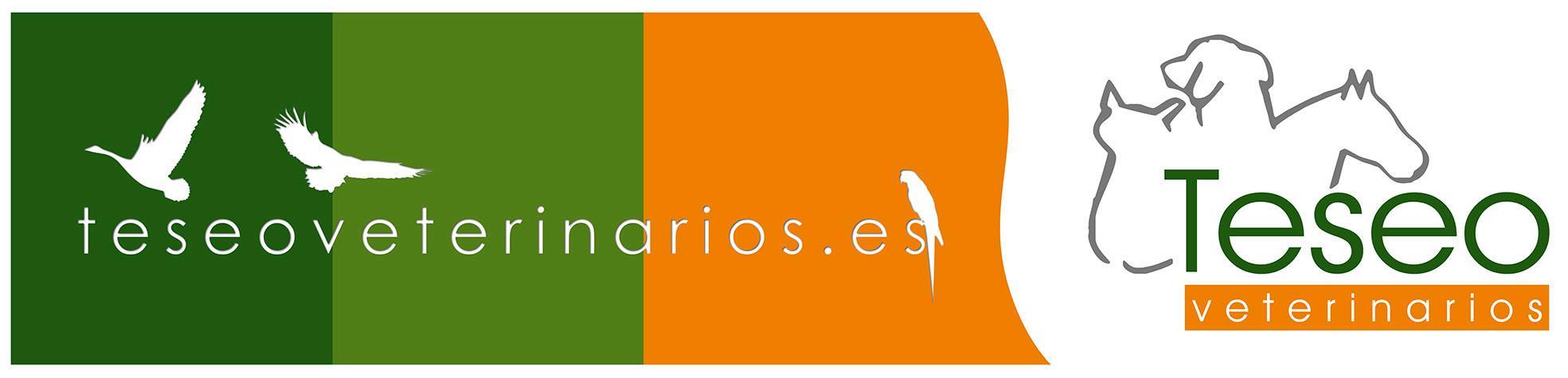 TESEO VETERINARIOS logo